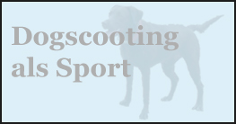 Hundesport Dogscooting