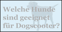 Dogscooter Hunde
